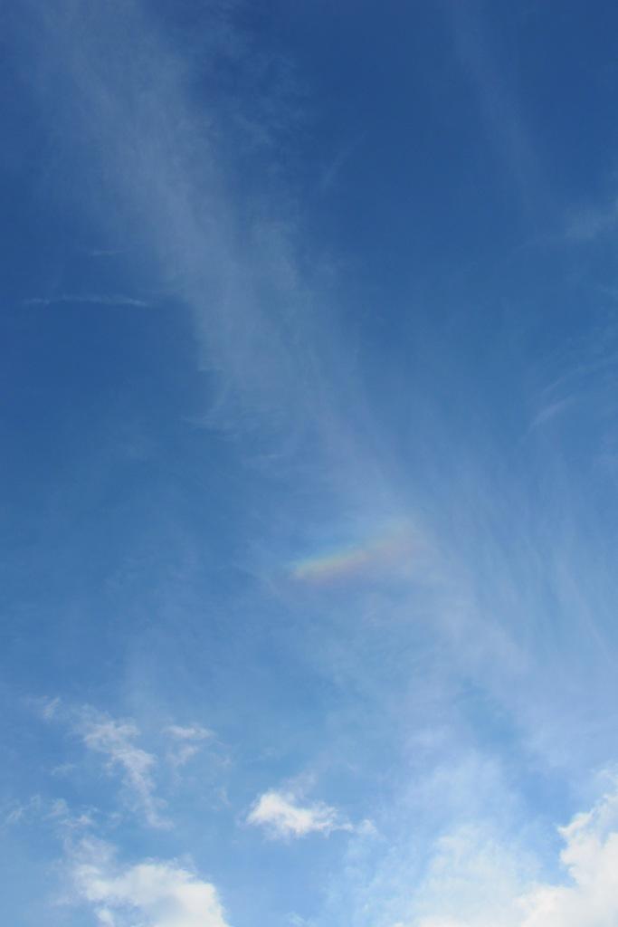 Mini rainbow!