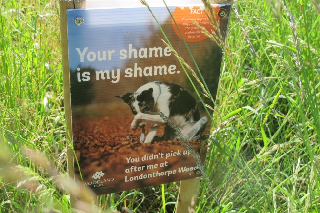 They have a massive problem with dog waste. Shouldn't have a dog if you can't be a responsible owner!