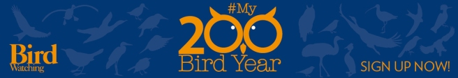 200_bird_year_banner_new