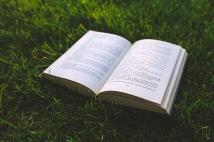 nature-grass-green-book