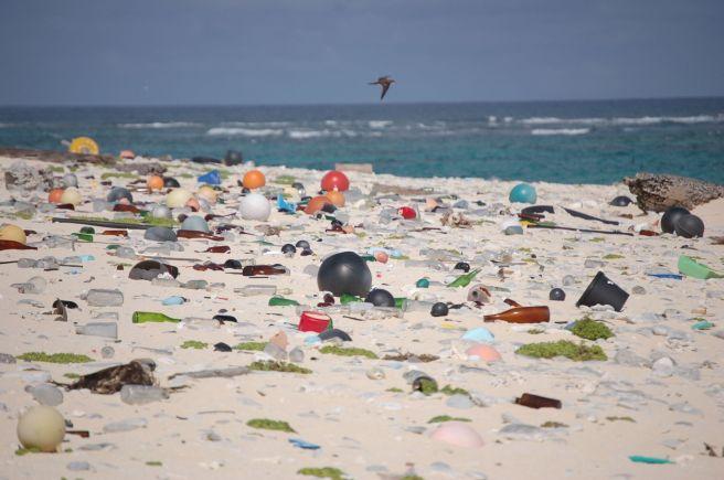 Beach_strewn_with_plastic_debris_(8080500982)