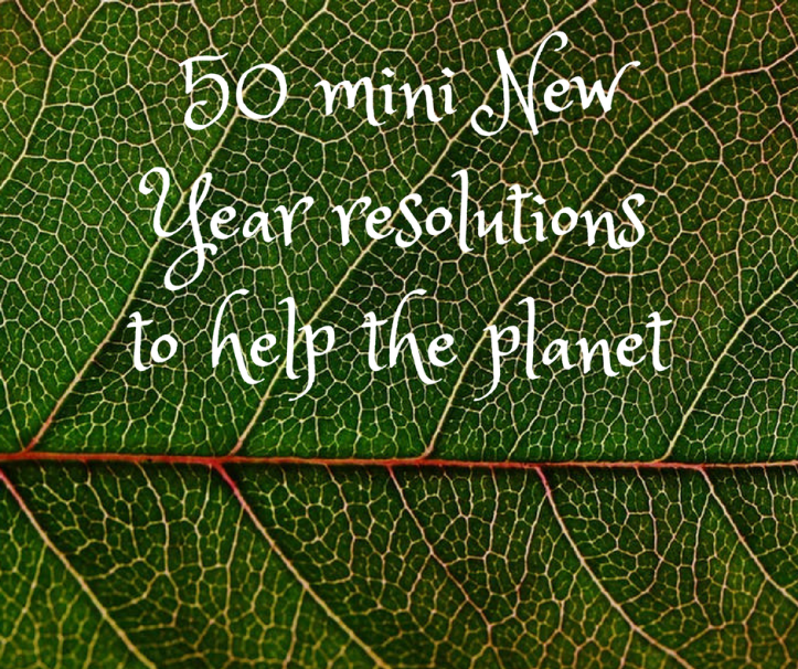 40 mini New Year resolutions to help the planet