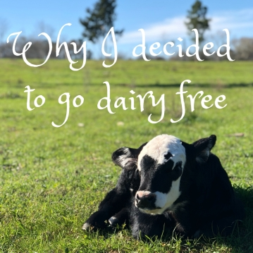 why-i-decided-to-go-dairy-free